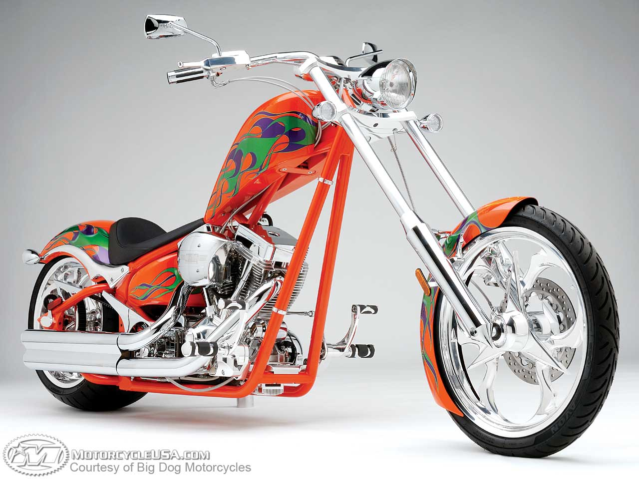 Big Dog Motorcycles #3