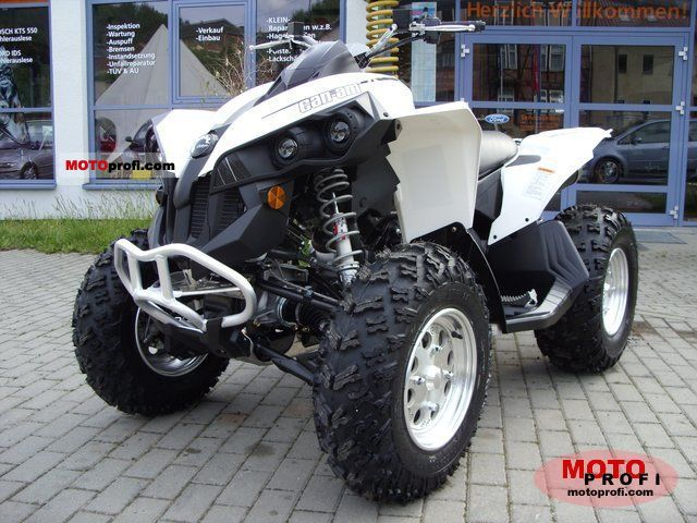 Clipic Custom Guepard 250 2008 #12