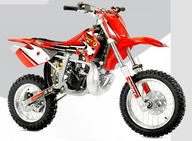 Factory Bike Minidesert RC14 2007 #2