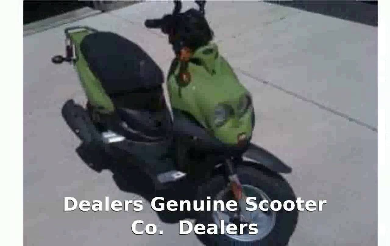 Genuine Scooter Roughhouse R50 2010 #1
