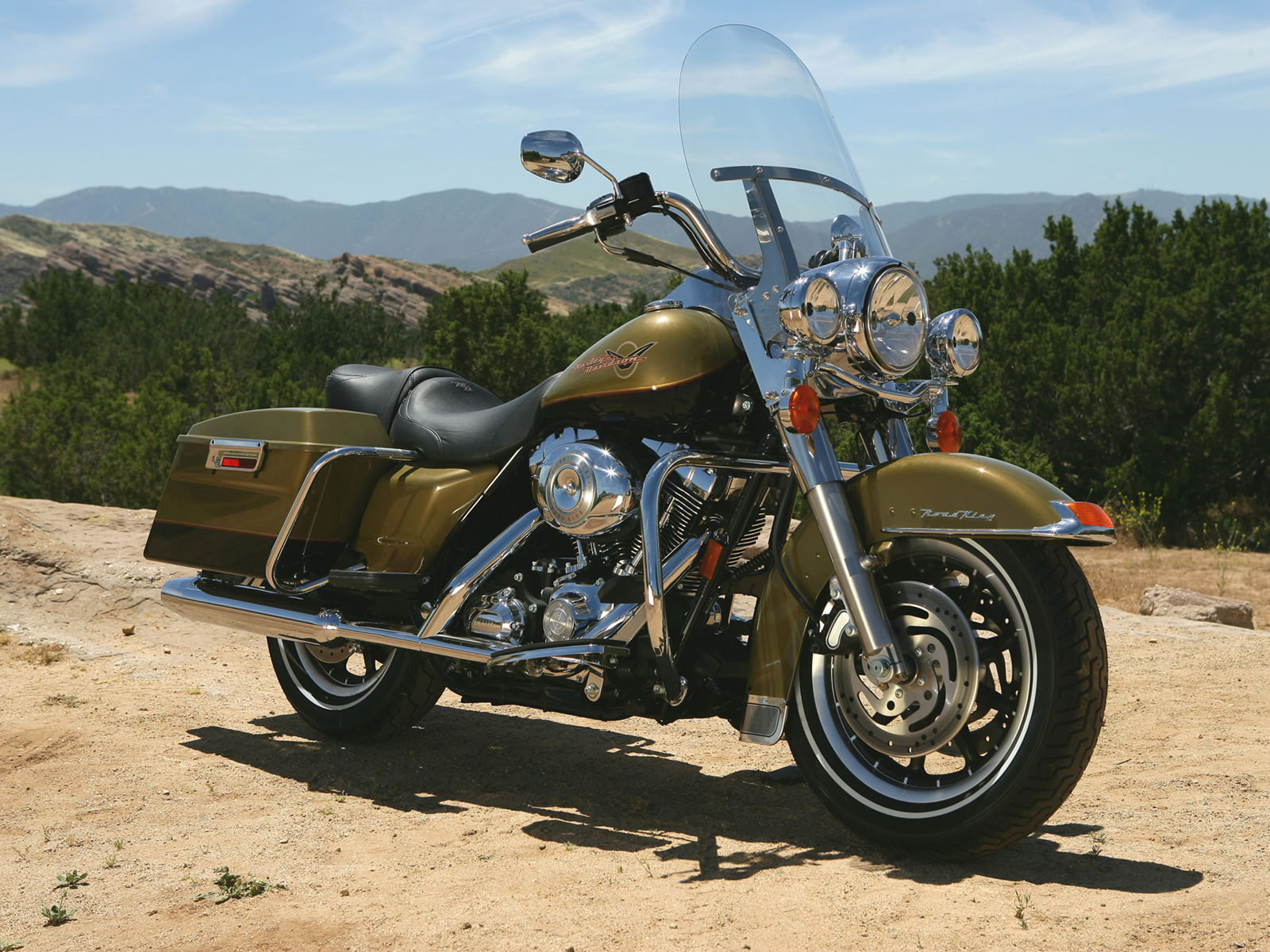 2007 Harley-Davidson FLHR Road King #10