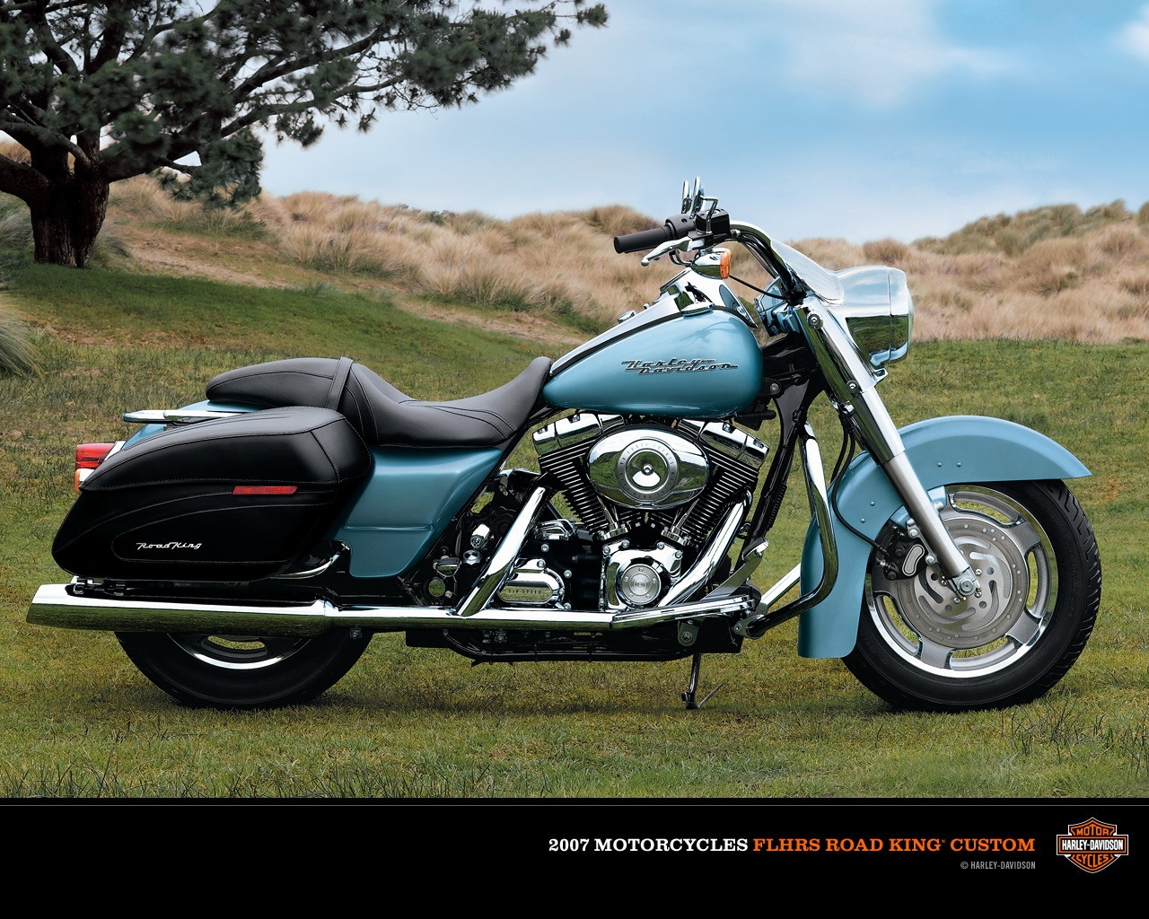 Harley-Davidson FLHRS Road King Custom #5