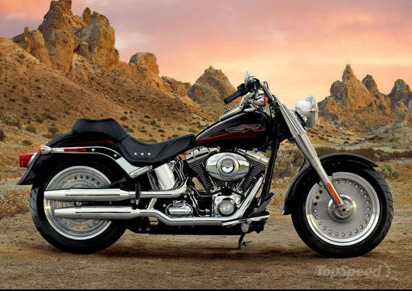 Harley-Davidson FLSTF Softail Fat Boy 2008 #7