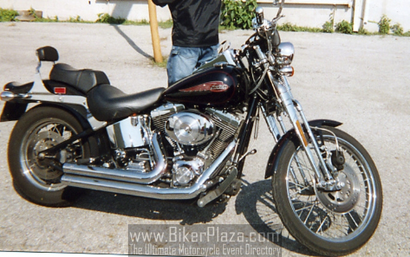 Harley-Davidson FXSTS Springer Softail 2002 #1