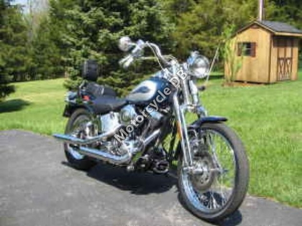 Harley-Davidson FXSTS Springer Softail 2002 #14