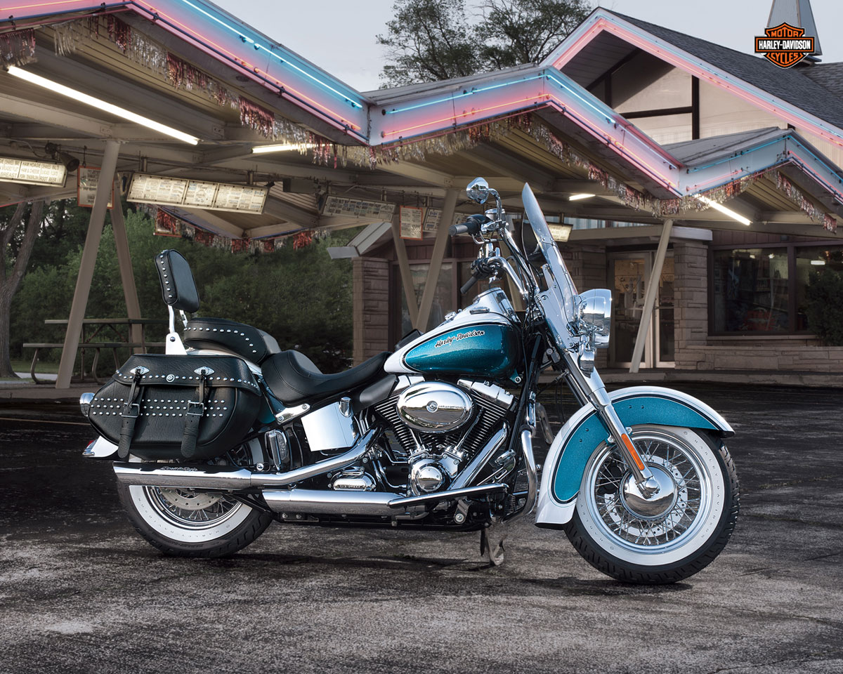 Harley-Davidson Heritage Softail Classic Injection #8