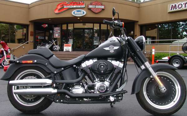 2013 Harley-Davidson Softail Fat Boy Lo #6