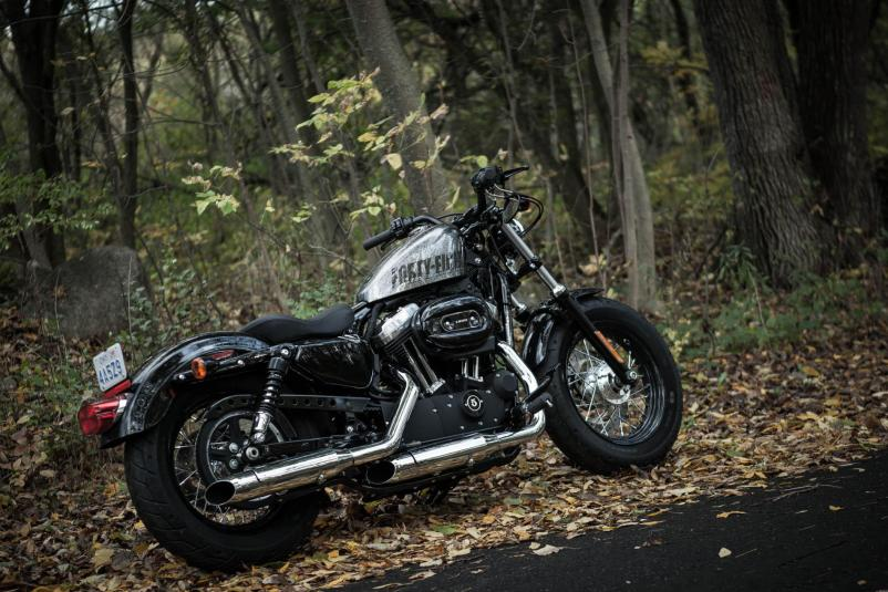 2014 Harley-Davidson Sportster Forty-Eight #13