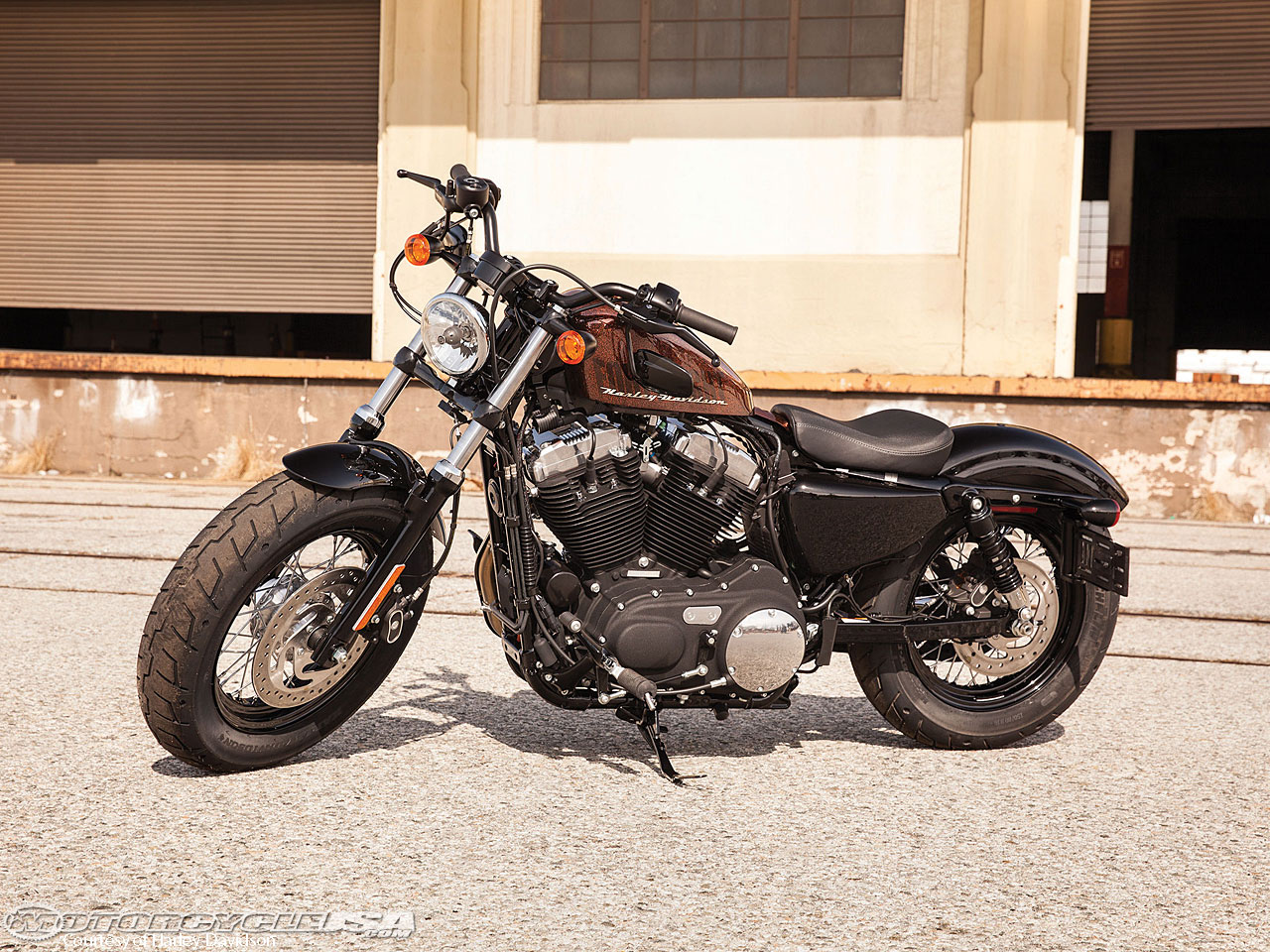 Harley-Davidson Sportster Forty-Eight Dark Custom 2014 #14