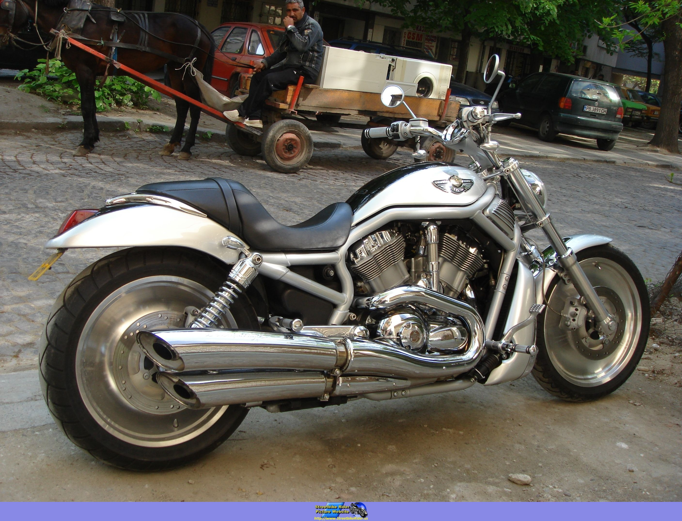Incredible 2003 Harley Davidson Vrsca V Rod Image 5 Lamtechconsult Wood Chair Design Ideas Lamtechconsultcom