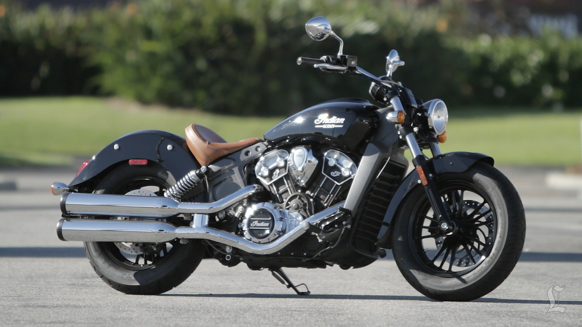 Indian Scout #7