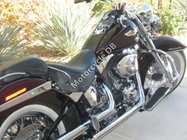Rhino HUnter Softail STP 002 2008 #10