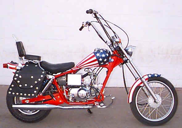 Stars and Stripes and a patriotic Pagsta Choppa  #6