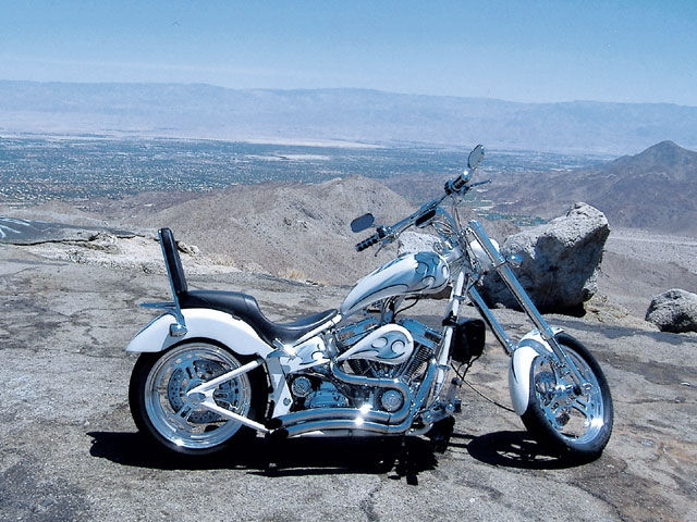 Titan Sidewinder Custom Softail Chopper #8