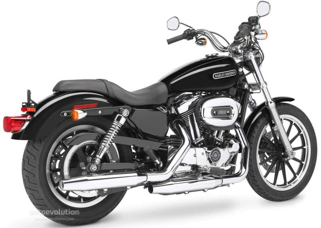 2009 harley davidson xl1200l sportster 1200 low moto zombdrive com. Black Bedroom Furniture Sets. Home Design Ideas