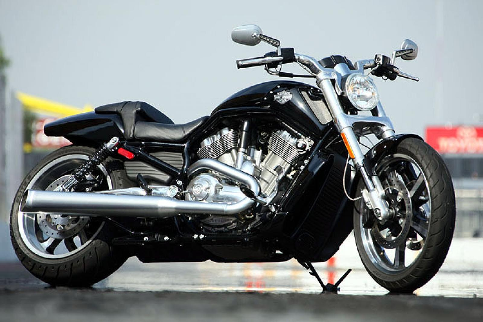 harley davidson harley davidson v rod muscle moto zombdrive com. Black Bedroom Furniture Sets. Home Design Ideas