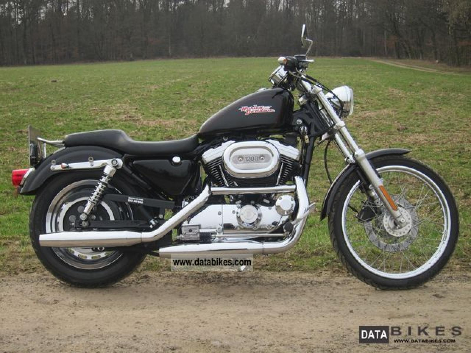 2006 harley davidson xl1200c sportster 1200 custom moto zombdrive com. Black Bedroom Furniture Sets. Home Design Ideas