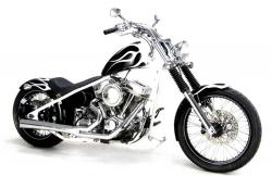 2009 BMC Choppers Hooligan 541