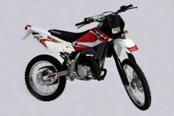 Clipic Custom Guepard 125 2008 #4