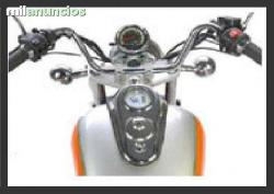 Clipic Custom Guepard 250 2008 #10