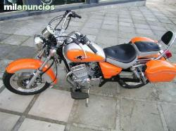 Clipic Custom Guepard 250 2008 #5