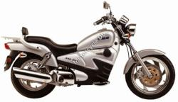 Clipic Custom Guepard 250cc 2009