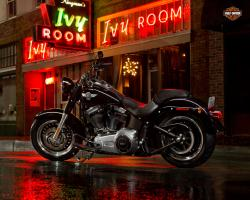 Harley-Davidson Fat Boy Lo 110th Anniversary 2013 #11