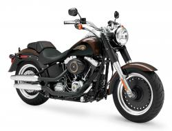 Harley-Davidson Fat Boy Lo 110th Anniversary 2013 #2