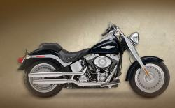 Harley-Davidson FLSTF Fat Boy Peace Officer 2008