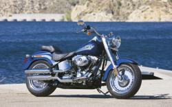 Harley-Davidson FLSTF Softail Fat Boy 2008 #8