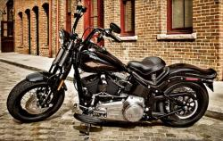 Harley-Davidson FXSTS Softail Springer 2006 #11