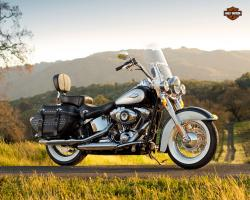 Harley-Davidson Heritage Softail Classic Injection 2001 #11