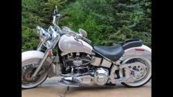 Harley-Davidson Heritage Softail Special 1996 #10