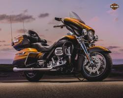 Harley-Davidson Softail Breakout Special Edition #11