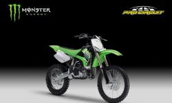 Kawasaki KX85-I Monster Energy #10