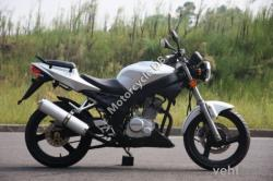 Shineray XY125GY-6 2011 #6