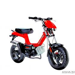 Tomos Youngst r Racing #7