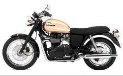 Triumph Bonneville 50th #8