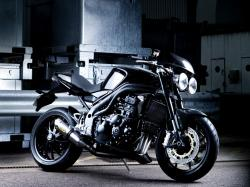 Triumph Speed Triple 2008 #5