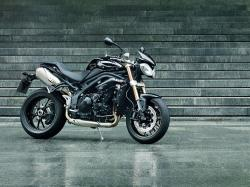 Triumph Speed Triple 2013 #8