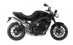 Triumph Speed Triple SE #6