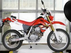 Xingyue XY 250GY Dirt Bike shows the nature