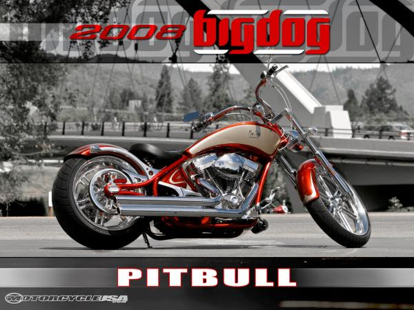 2011 Big Dog Pitbull