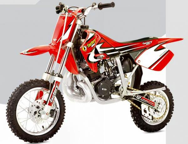 2005 Factory Bike Desert SM250