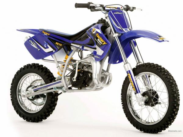 Factory Bike Desert YR250