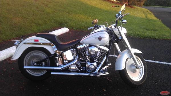 2001 Harley-Davidson Fat Boy Injection