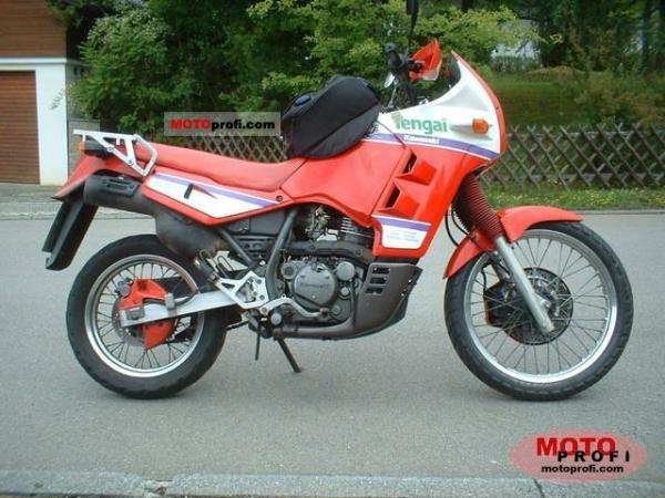 1991 Kawasaki Tengai (reduced effect)